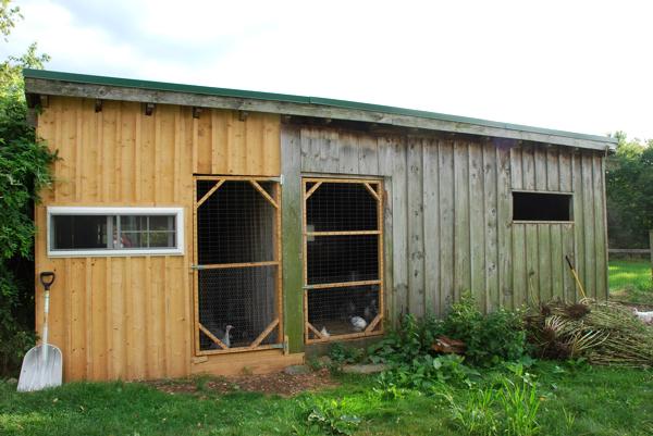 Turkey and chicken shed // TinyFarmhouse.com