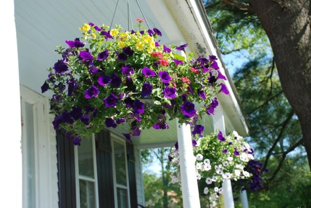 tiny farmhouse front porch hanging flowers | tiny farmhouse