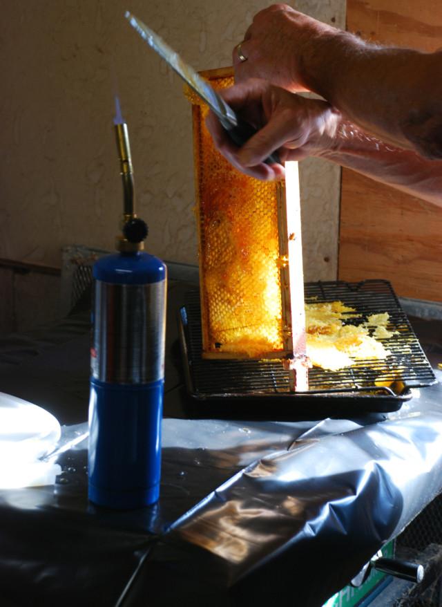 the-honey-harvest-heating-knife | tiny farmhouse