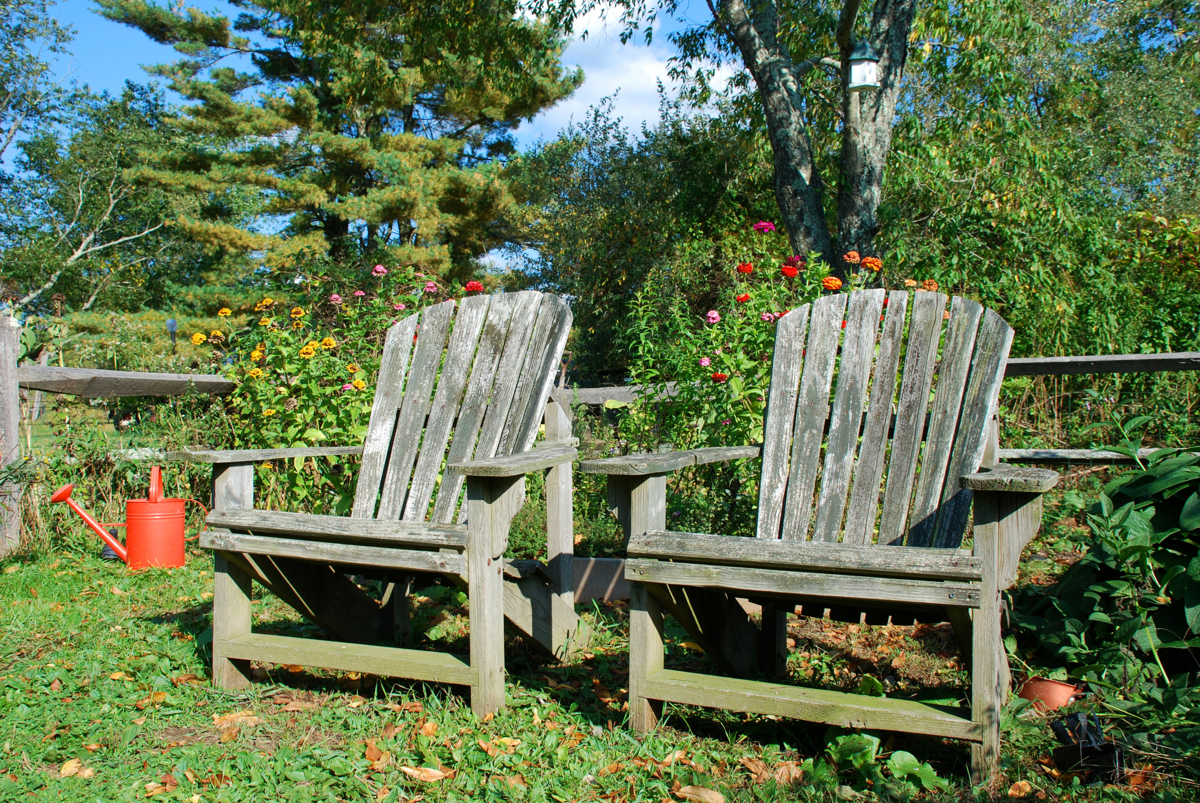 This Week in the Garden: early October