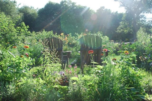 Happy-2015-sunshine-garden | tiny farmhouse