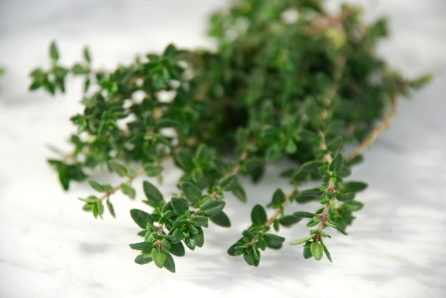 this-week-in-the-garden-early-January-thyme-bunch | tiny farmhouse
