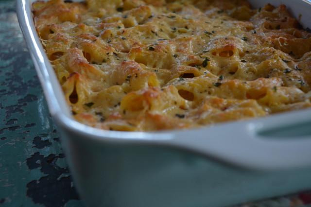 al butternut squash pasta al butternut squash pasta al pasta al forno ...