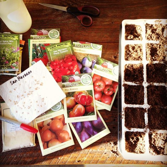 this week in the garden late March seeds | tiny farmhouse