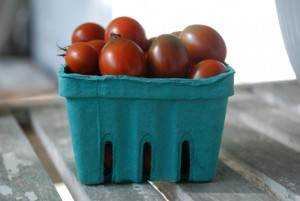 Saving Season-to-Season with Organic Gardening