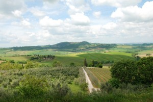 Introducing Tiny Farmhouse Tours: Culinary Tours in Italy